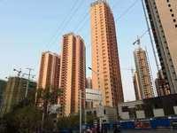 大唐凤凰城 市中心新小区 户型客厅通阳台朝南 采光无忧